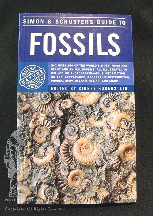 Fossil guides