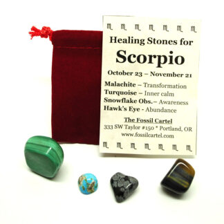 A scorpio healing pouch containing a tumbled malachite stone, turquoise, snowflake obsidian, and a hawk's eye tumbled stone along with a red felt pouch, against a white background