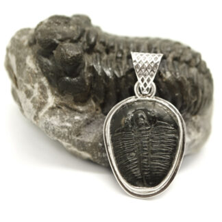 A black trilobite fossil set into a sterling silver pendant with a decorative bail leaning on a trilobite fossil in matrix against a white background