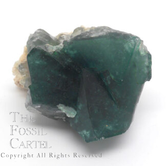 A deep green fluorite cluster from Madagascar against a white background