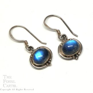 A pair of decorative sterling silver earrings with deep blue rainbow moonstone cabochons against a white background
