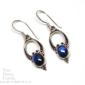 A pair of ornate sterling silver earrings with deep blue rainbow moonstone cabochons against a white background