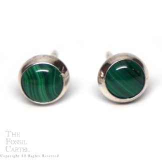 A pair of round malachite stud earrings in sterling silver against a white background