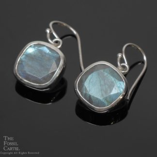 Labradorite Faceted Square Sterling Silver Earrings