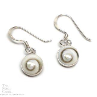 Shiva Shell Circular Sterling Silver Earrings
