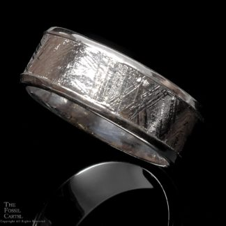 Muonionalusta Meteorite and Sterling Silver Ring; Size 10