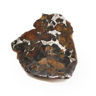A rough sericho meteorite with iron and nickel within the matrix against a white background