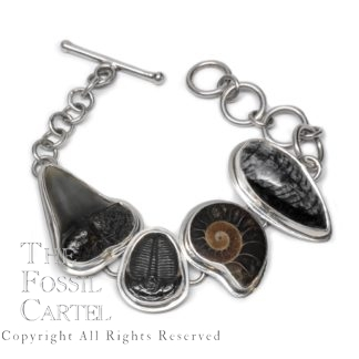 Ammonite, Trilobite, Orthoceras, and Shark Tooth Fossils Sterling Silver Bracelet
