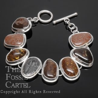 Fire Agate, Amber, Dinosaur Bone Fossil, and Trilobite Fossil Sterling Silver Bracelet