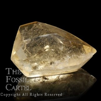 Polished Natural Citrine Double Terminated Crystal Point