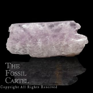 Rough Kunzite Crystal