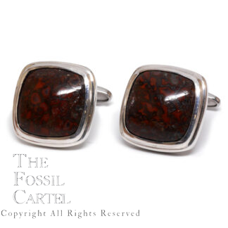 Dinosaur Bone Sterling Silver Cufflinks