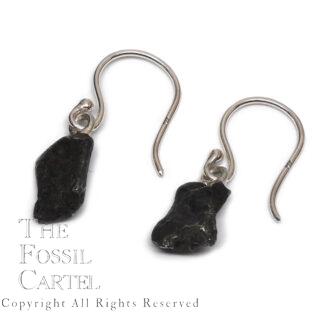 Meteorite Sterling Silver Earrings, Agoudal