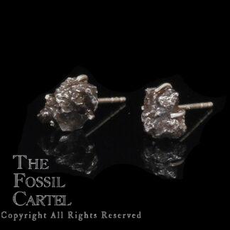 Sikhote-Alin Meteorite Stud Earrings