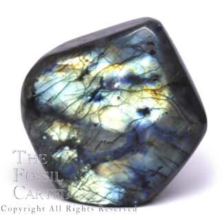 Labradorite Polished Stand-Up