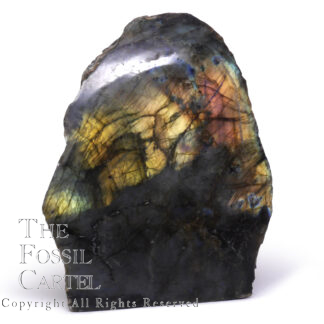 Labradorite One-side Polished Stand Up