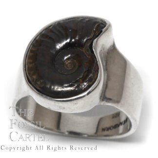 Ammonite Fossil Sterling Silver Ring; Size 9 1/2