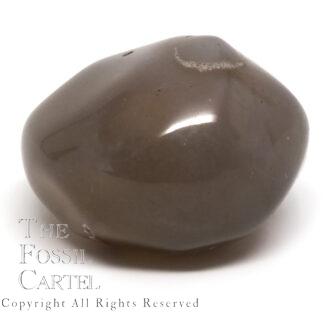 Polished Enhydro Agate