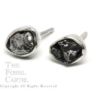 Meteorite Sterling Silver Stud Earrings