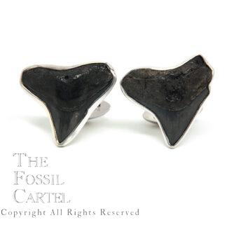 Megalodon Shark Tooth Sterling Silver Cufflinks