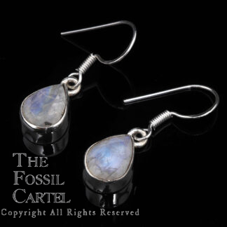 A pair of sterling silver rainbow moonstone teardrop dangle earrings against a black background