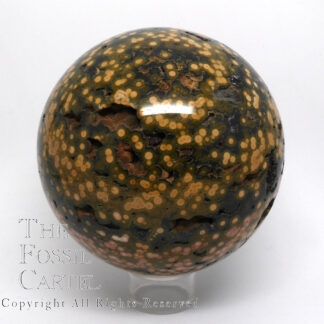 A large, well-speckled, green and beige, ocean jasper (aka orbicular jasper) polished sphere against a blank background sitting on a clear plastic display stand. This angle shows more yellowish spots.