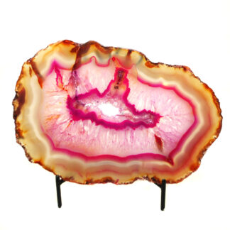 An agate slice that has been dyed pink with definitive banding along the edges set against a white background