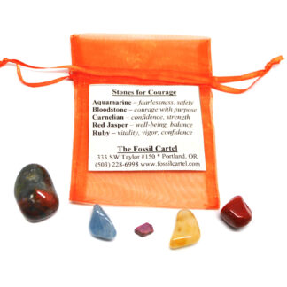 A healing pouch set featuring tumbled aquamarine, bloodstone, carnelian, red jasper, and a ruby crystal with an orange mesh pouch against a white background