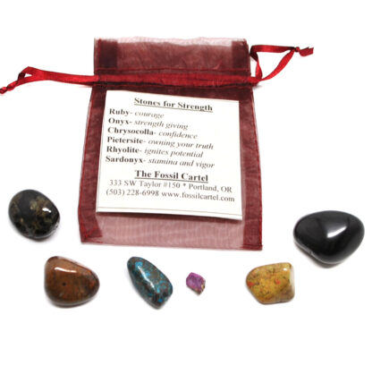 A healing pouch set featuring tumbled sardonyx, chrysocolla, pietersite, rhyolite, onyx, and a ruby crystal with a red mesh pouch against a white background
