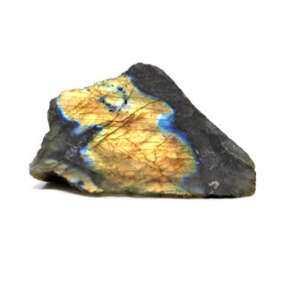 A piece of half polished labradorite with intense flashes of color against a white background