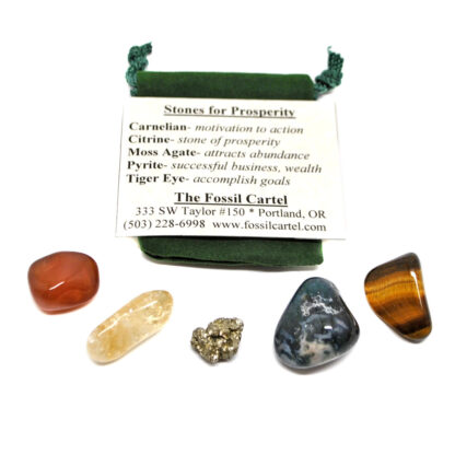 A prosperity healing pouch set that features tumbled carnelian, citrine, rough pyrite, moss agate, and tiger's eye