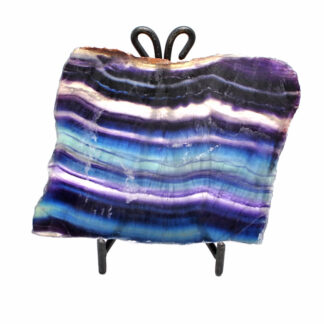 A cut and polished rainbow fluorite slab with deep blue and purple banding against a white background
